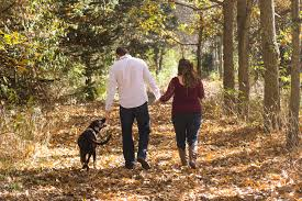 Walking Your Dog: Three Steps to Stop Pullingon Leash