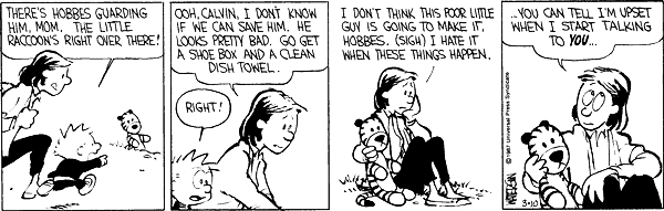 top calvin and hobbes quote