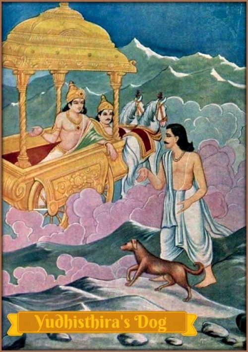 Mahabharat - Pandava dog story