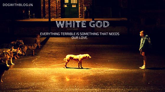White God movie review