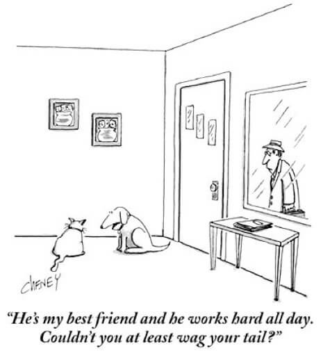 Best New Yorker Cat Cartoons