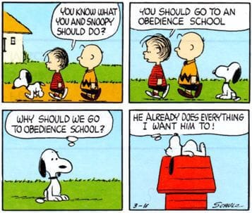 Snoopy obedience school