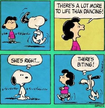 snoopy more to life