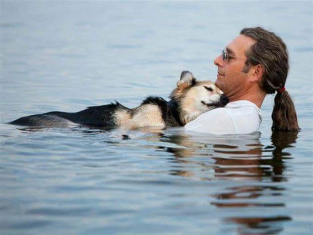 dog-therapy-swim