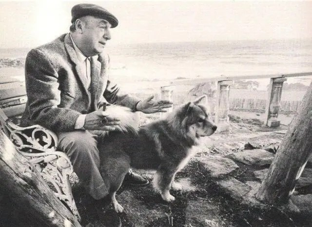 You need to read this beautiful Pablo Neruda dog poem