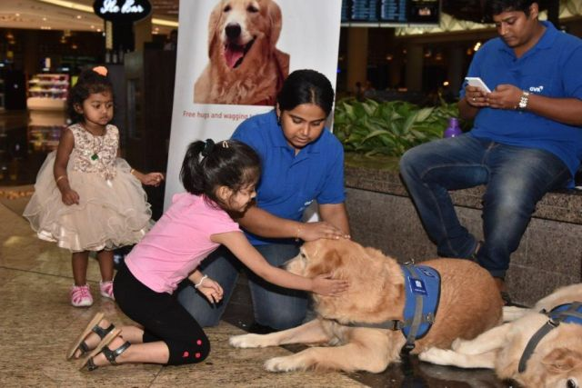 therapy dogs India