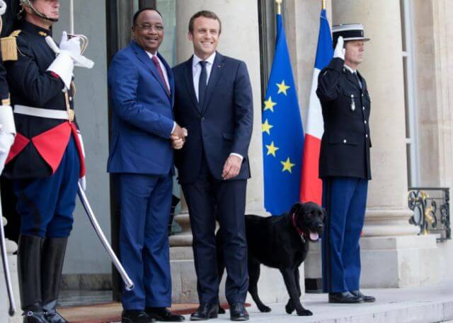 French President Emmanuel Macron dog