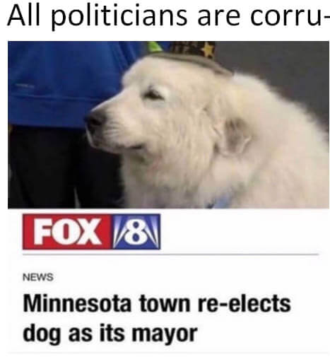 dog mayor