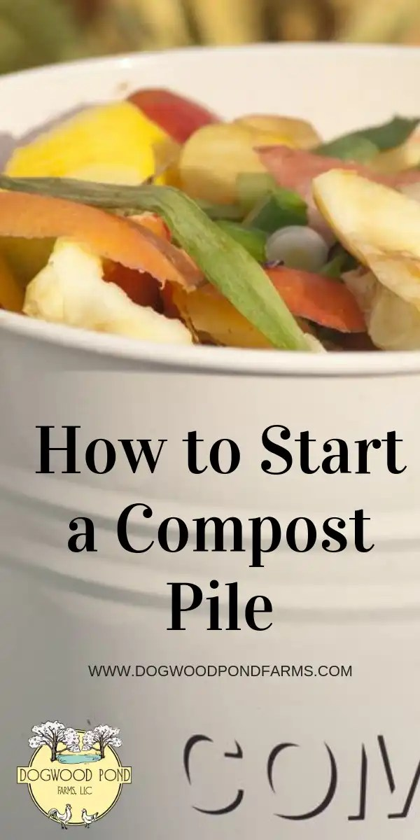 Composting is easy to get started and will be great for your soil