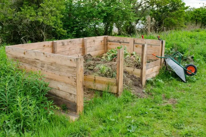 Kitchen scraps and yard waste are perfect to start your compost pile