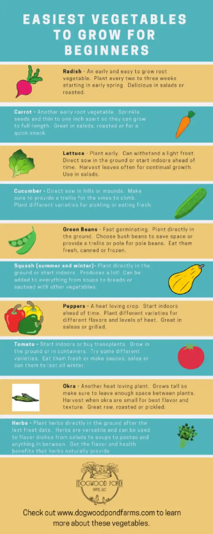 Try out these vegetables if you are a beginner