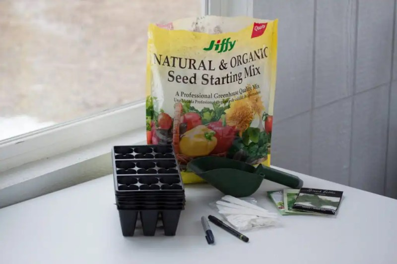 Save time and money by starting seeds indoors
