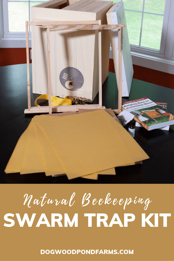 swarm traps for natural beekeeping