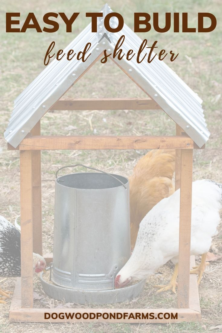 Easy to Build Chicken Feeder Shelter