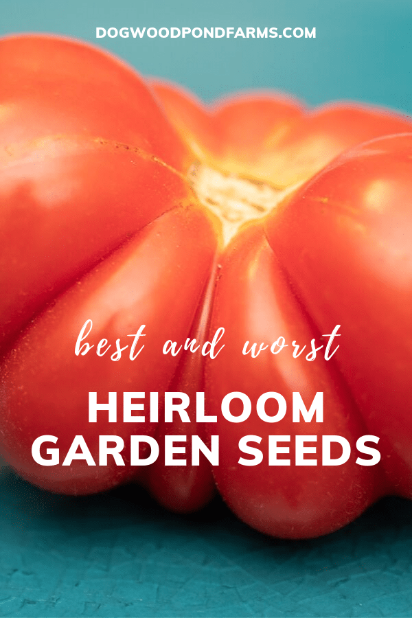 Favorite Heirloom seeds for the garden