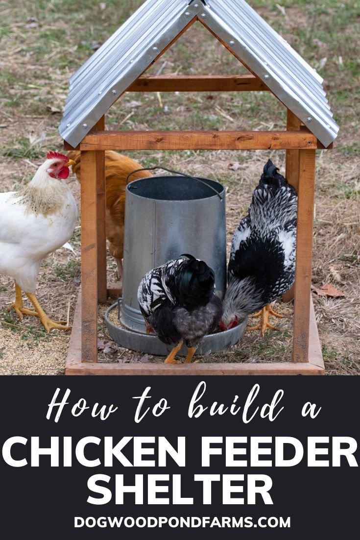 Chicken Feeder Shelter