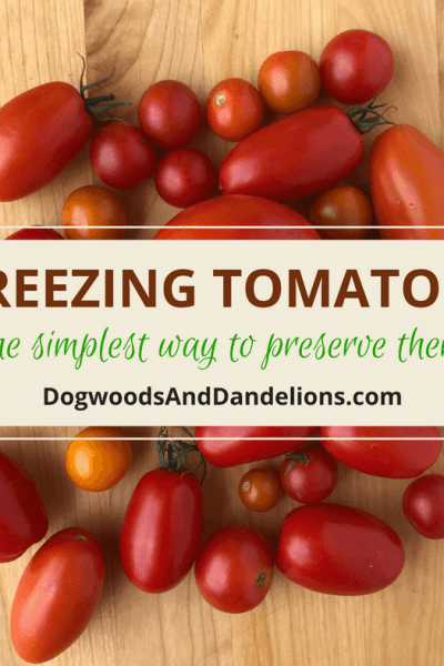 The easiest way to preserve tomatoes is to freeze them. Freezing tomatoes is so simple, you'll never let another tomato rot on the counter again. how to freeze tomatoes   preserving tomatoes   Freezing tomatoes   freezing whole tomatoes