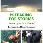 Preparing for Storms When You Homestead