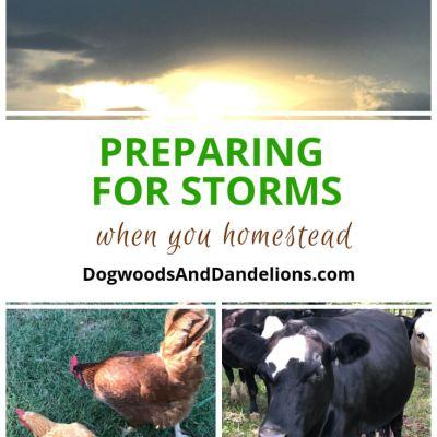 Preparing for Storms   hurricane preparedness   storm preparedness
