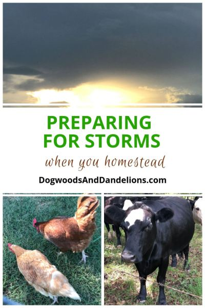 Preparing for Storms | hurricane preparedness | storm preparedness