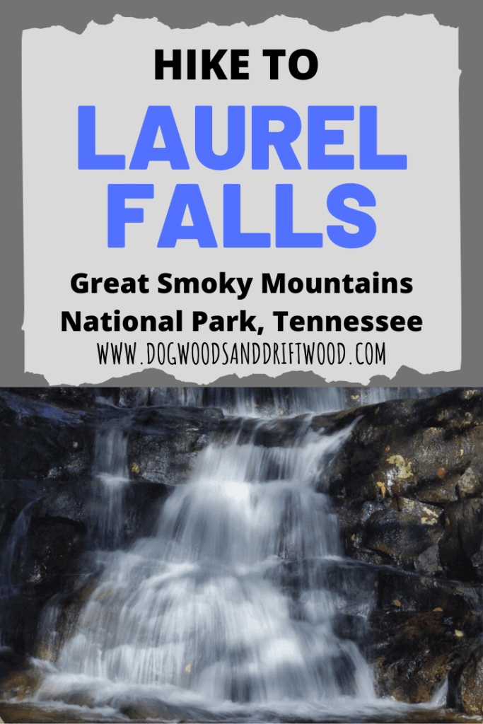 hiking to laurel falls waterfall