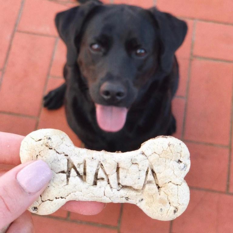 galleta-nala