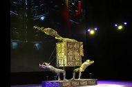 Qatar China Year of Culture 2016
