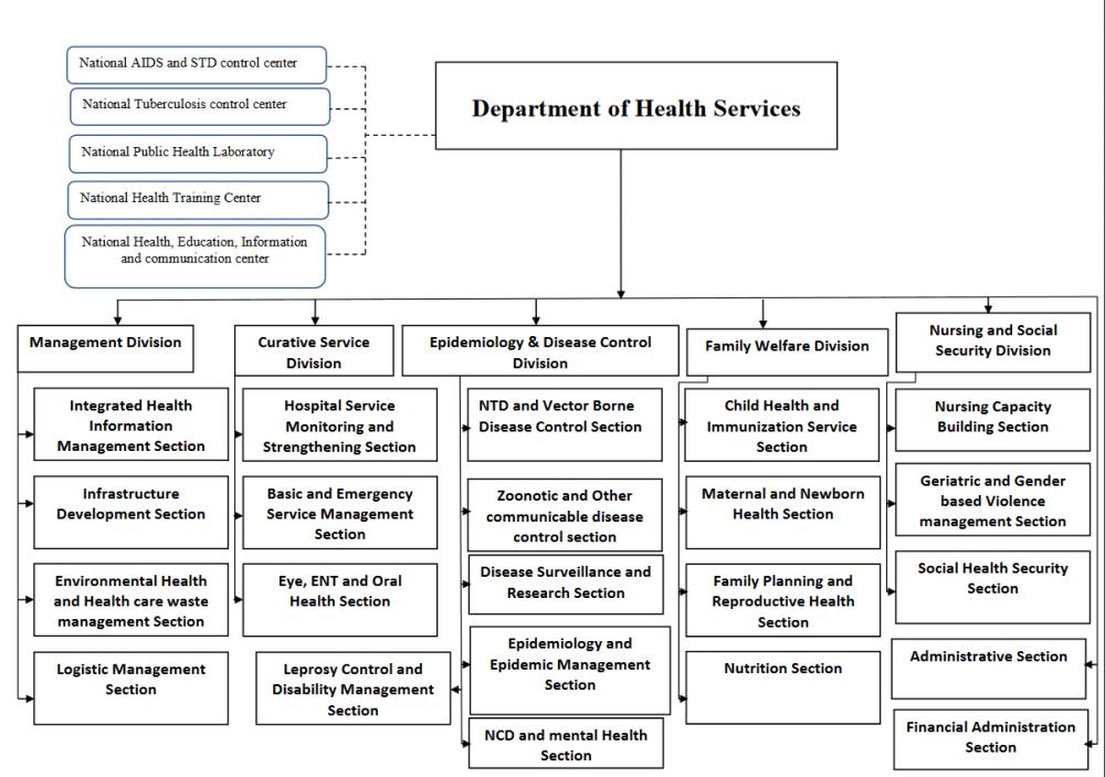 medium resolution of organization structure