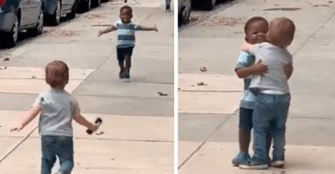 """À 2 ans ils donnent l'image vraieamitiéVidéo - À 2 ans, ils donnent l'image de la """"vraie"""" amitié-Vidéo"""