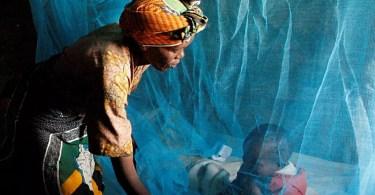 Plus de femmes enceintes et d'enfants sont protégés paludisme mais les progrès stagnent OMS - Plus de femmes enceintes et d'enfants sont protégés du paludisme, mais les progrès stagnent (OMS)
