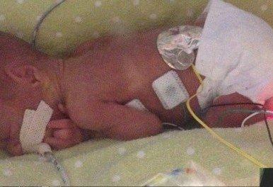 Baby stella main(1)