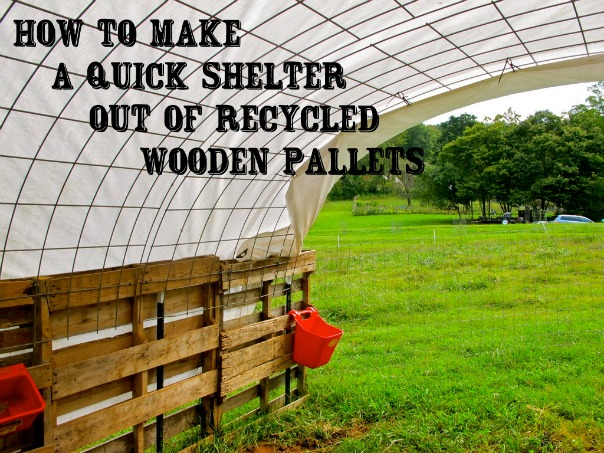 How-to-make-a-quick-shelter-out-of-recycled-wooden-pallets
