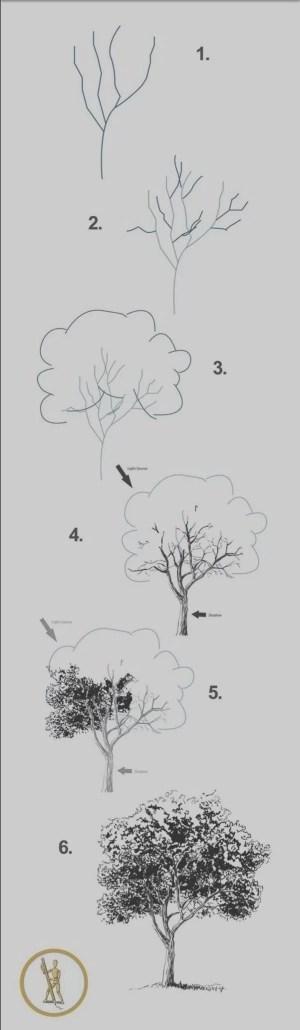step drawing draw beginners easy things cool simple tutorials