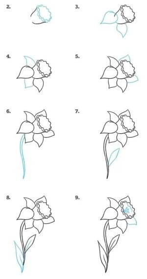 step drawing draw easy flower tutorial tutorials flowers daffodil drawings simple doodle zeichnen fiori realistic blumen hm disegna disegni zeichnung