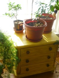 Upcycled Furniture: Found Dresser Converted to Living Room ...