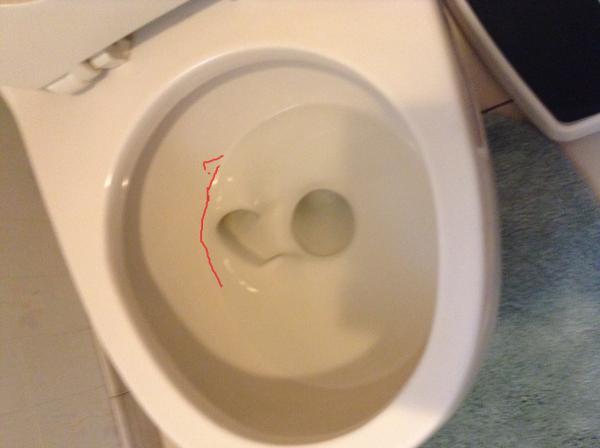 Toilet Bowl No Longer Fills Up High Enough?  Doityourself