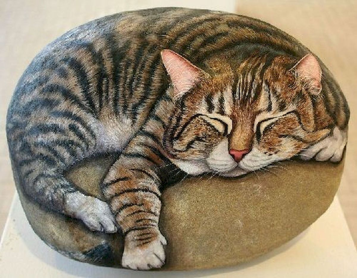 50 Best DIY Painted Rocks Animals Cats for Summer Ideas (38)