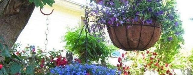 50 Awesome DIY Hanging Plants Ideas For Modern Backyard Garden (1)