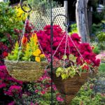 50 Awesome DIY Hanging Plants Ideas For Modern Backyard Garden (15)