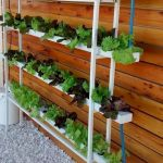 44 Creative DIY Vertical Garden Ideas To Make Your Home Beautiful (14)