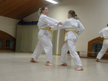 Karate Kyu Prüfungen Detmold 2015