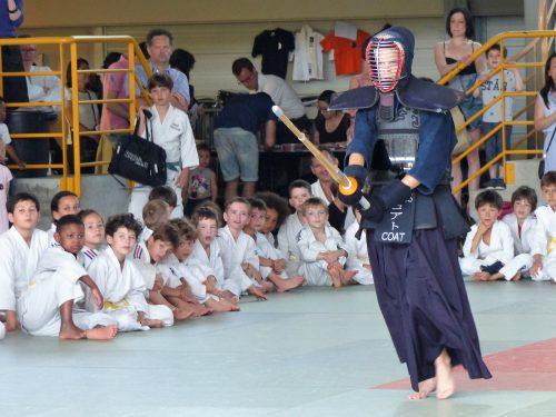 Combat Kendo