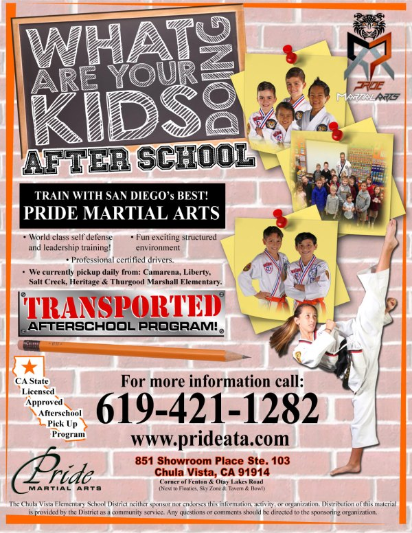 20 Karate After School Program Flyers Pictures And Ideas On Meta