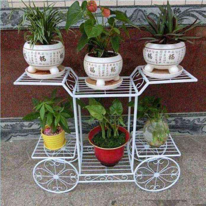 plantas-3   10 великолепных идей для украшения вашего дома растениями которые вам понравятся