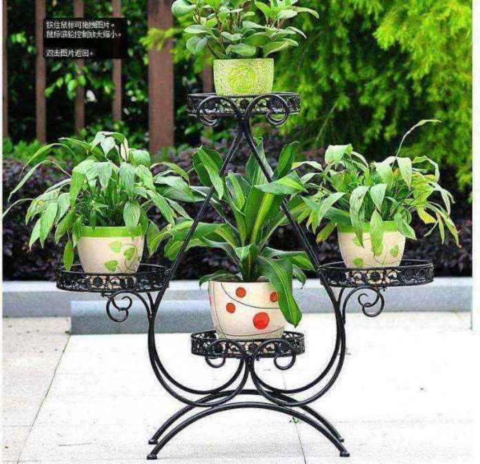 plantas-4   10 великолепных идей для украшения вашего дома растениями которые вам понравятся