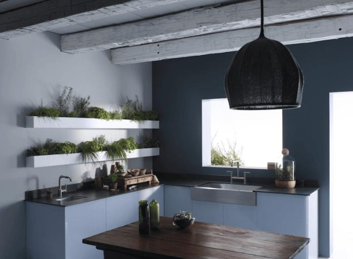 image2 | 7 растений которые необходимо вырастить в кухне