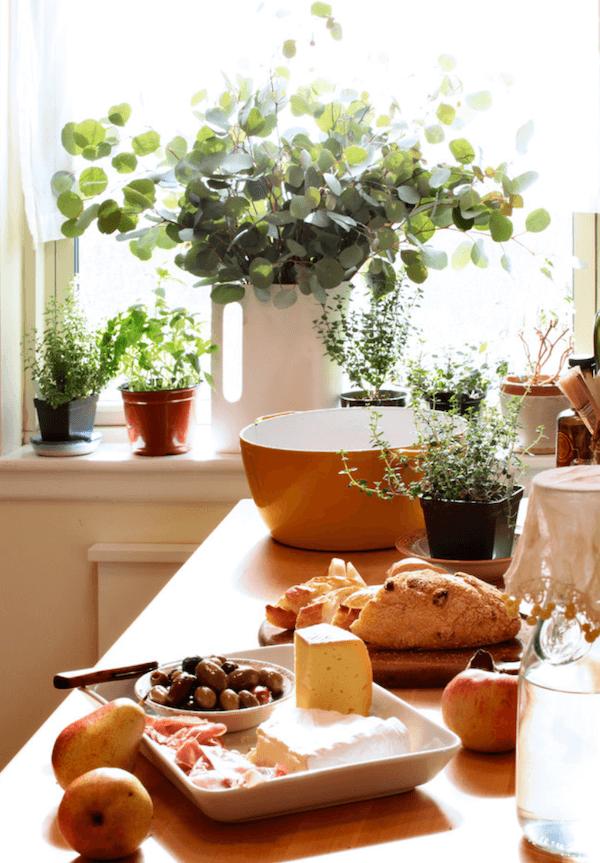 image3 | 7 растений которые необходимо вырастить в кухне