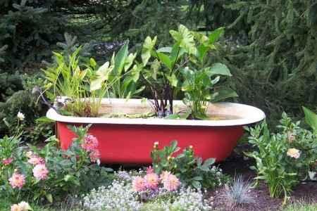 image8-34 | 10 проектов садовых прудиков из ванны своими руками
