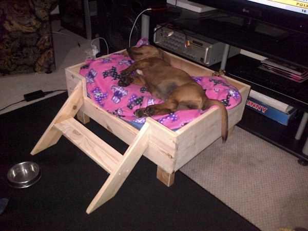 image24   Кровати для домашних животных из подручных материалов
