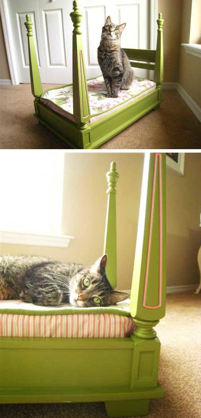 image3-14-e1541675676805   Кровати для домашних животных из подручных материалов